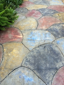 Great painted, concrete path at Sunken Gardens, St. Pete, FL